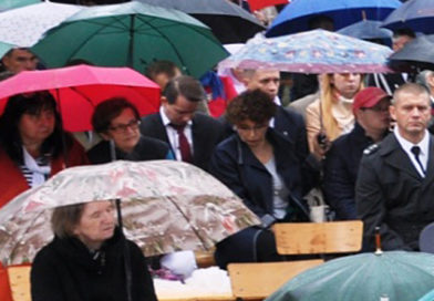 Udział polskiej wsi w walce o niepodległość Polski